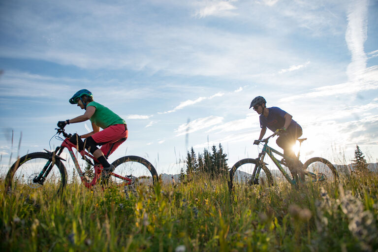 Christy sPorts Lone Star Bike Rentals - Path rides through the meadow