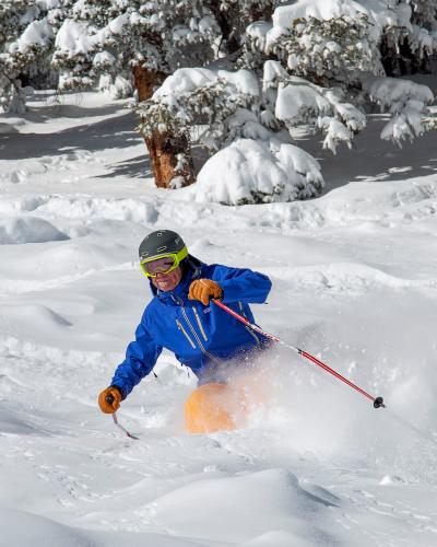 skier in pow