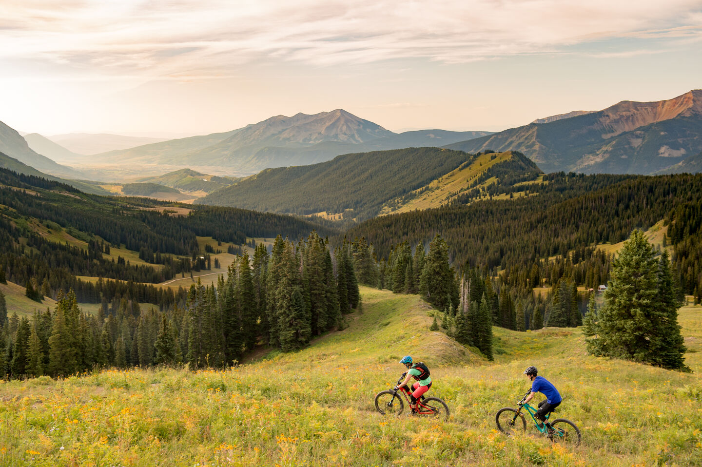 Two mountain bikers riding through meadow just before sunset