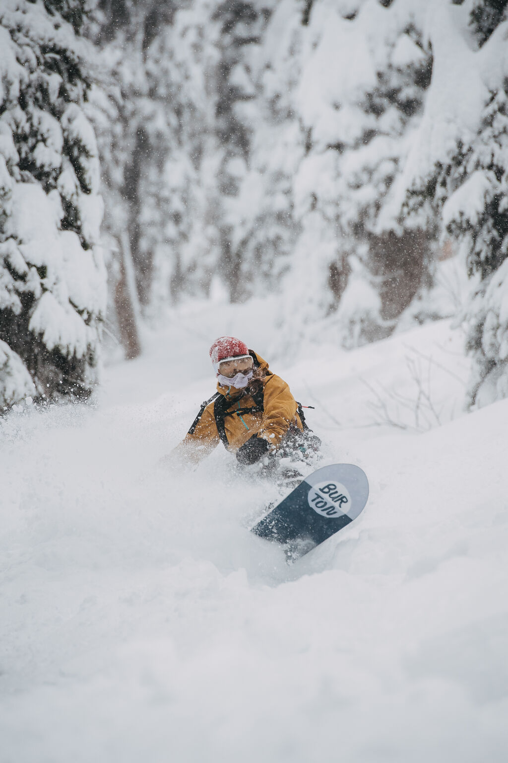 nose up out of the pow