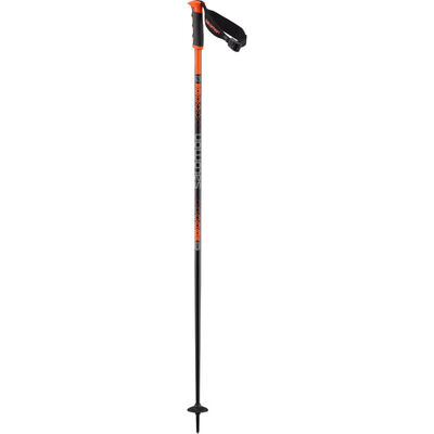 Salomon Arctic S3 Ski Poles 20/21