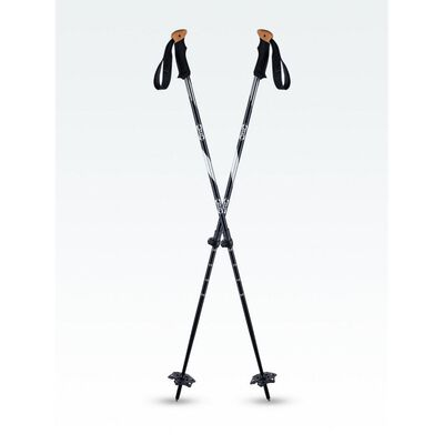 Atlas Trail Walking 2 Piece Pole - 20/21