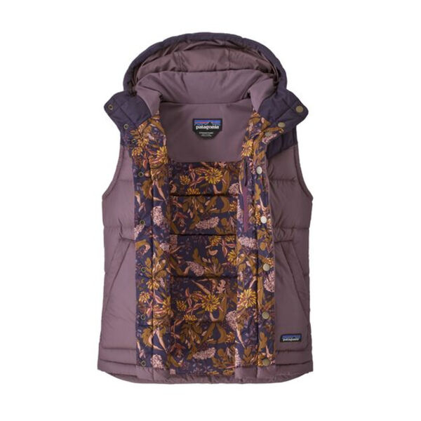 Patagonia Bivy Hooded Vest Womens